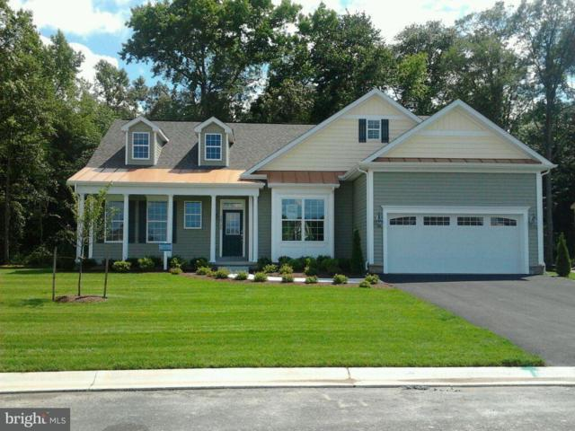 31886 Two Ponds Road, SELBYVILLE, DE 19975 (#1001566004) :: Barrows and Associates