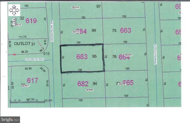 Lot 95 Hidden Acres Drive, FRANKFORD, DE 19945 (#1001566228) :: The Windrow Group