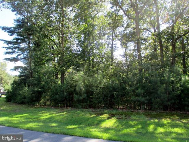 22781 Red Bay Lane, MILTON, DE 19968 (#1001566304) :: RE/MAX Coast and Country