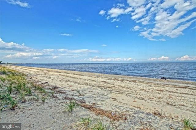 0 Passwaters Drive #537, SLAUGHTER BEACH, DE 19963 (#1001567110) :: The Emma Payne Group