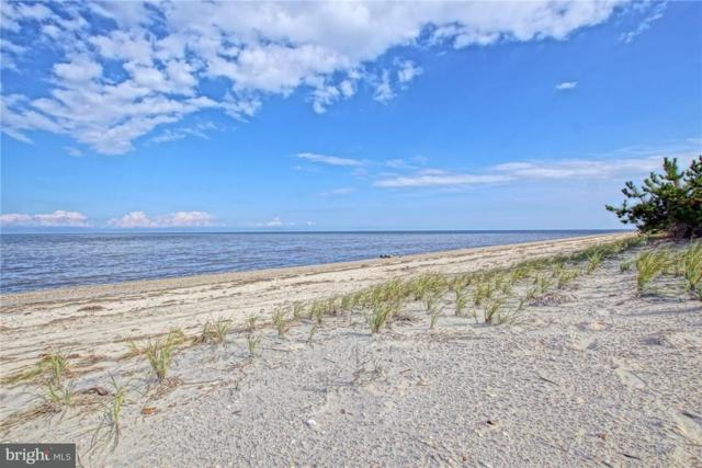 0 Passwaters Drive #533, SLAUGHTER BEACH, DE 19963 (#1001567122) :: The Emma Payne Group