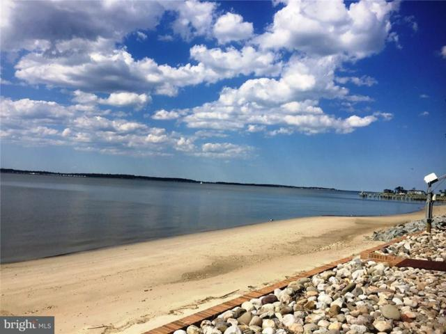 B5 Indian River Drive #5, DAGSBORO, DE 19939 (#1001567204) :: RE/MAX Coast and Country