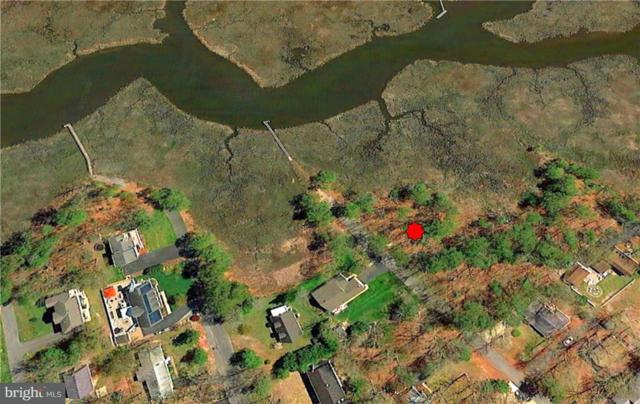 Lots 34 & 35 Shawnee Drive, DAGSBORO, DE 19939 (#1001568544) :: RE/MAX Coast and Country