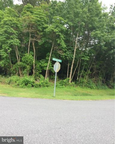 0 Dirickson Creek Road #19, SELBYVILLE, DE 19975 (#1001568624) :: The Rhonda Frick Team