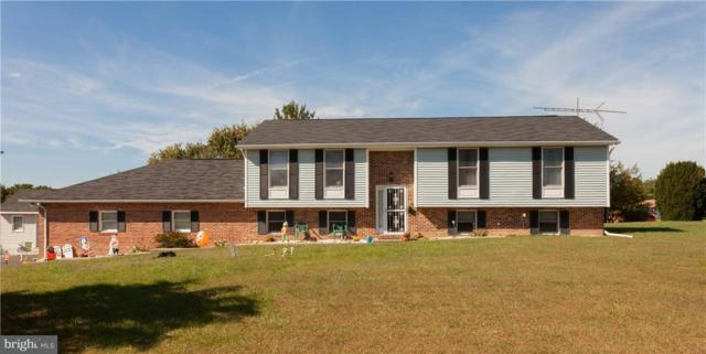 62 White Bark Drive, MIDDLETOWN, DE 19709 (#1001568792) :: The Windrow Group