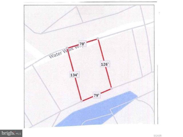 38033 Water Walk Way, SELBYVILLE, DE 19975 (#1001569062) :: Barrows and Associates