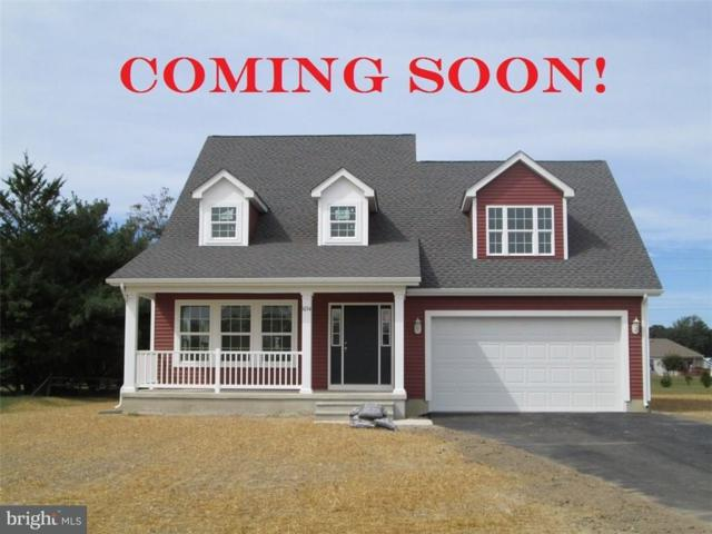 22873 Deep Creek Drive, LINCOLN, DE 19960 (#1001569248) :: The Emma Payne Group