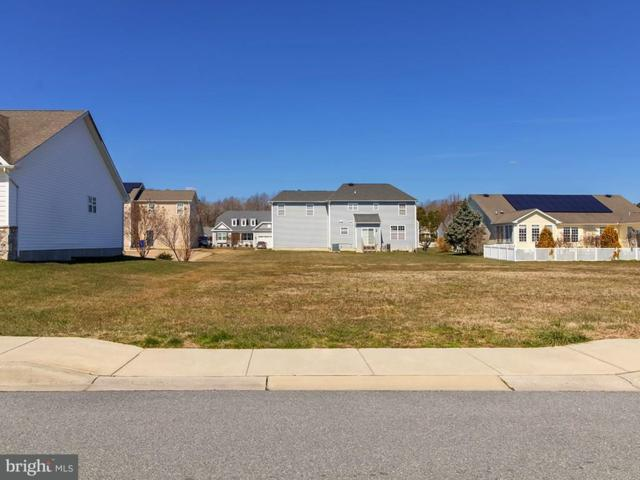 127 Pond Drive, MILTON, DE 19968 (#1001569316) :: Brandon Brittingham's Team