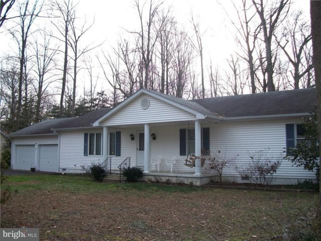 53 Love Creek Drive, LEWES, DE 19958 (#1001569468) :: The Rhonda Frick Team