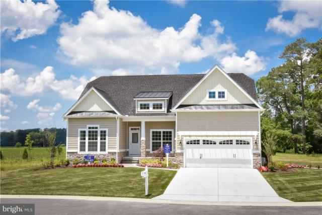 24947 Green Fern Drive, GEORGETOWN, DE 19947 (#1001569826) :: The Windrow Group