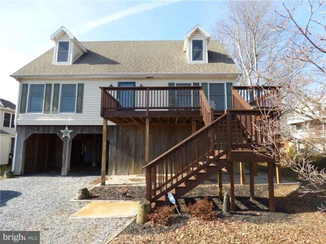 38215 Roy Creek Lane, SELBYVILLE, DE 19975 (#1001569900) :: The Windrow Group
