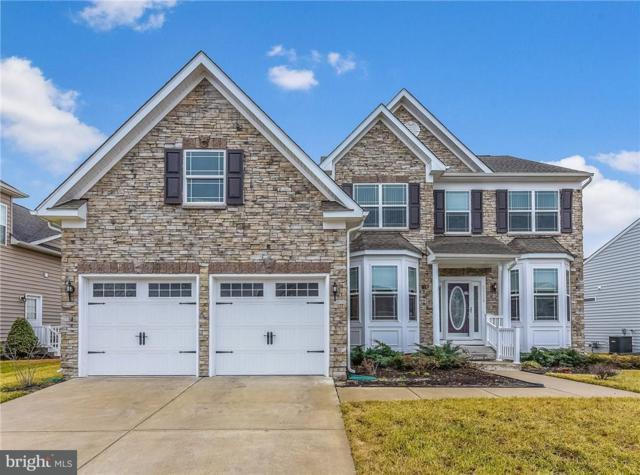 25175 Lumberton Drive, MILLSBORO, DE 19966 (#1001569978) :: Colgan Real Estate