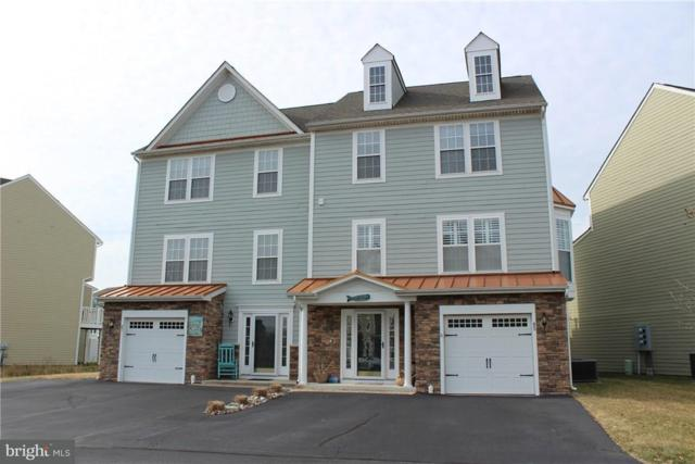 45 Docs Place, MILLVILLE, DE 19967 (#1001570366) :: RE/MAX Coast and Country