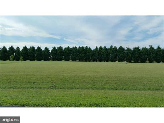 27168 Indian Meadows Circle #22, MILLSBORO, DE 19966 (#1001570778) :: The Rhonda Frick Team