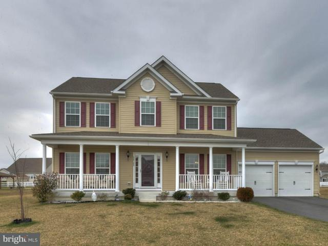 24782 Shoreline Drive, MILLSBORO, DE 19966 (#1001571376) :: The Windrow Group