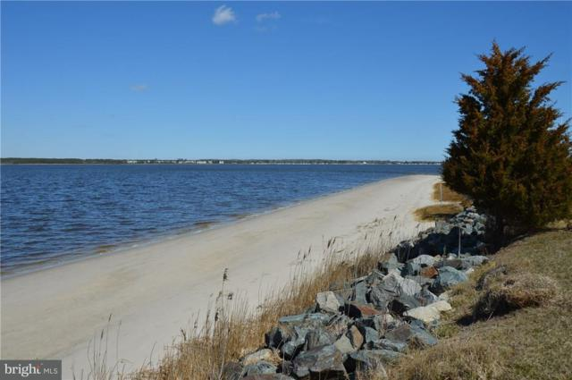 34390 Indian River Drive, DAGSBORO, DE 19939 (#1001571688) :: The Windrow Group