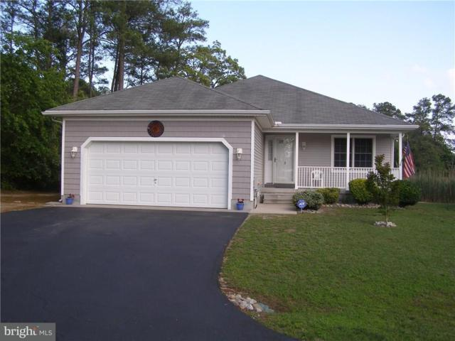 3 Bullrush Court, MILLSBORO, DE 19966 (#1001571694) :: The Allison Stine Team