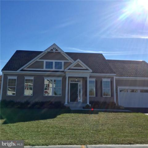 38539 Blue Hen Drive, SELBYVILLE, DE 19975 (#1001571998) :: The Windrow Group