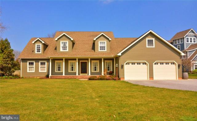 35821 Black Marlin Drive, LEWES, DE 19958 (#1001572064) :: The Windrow Group