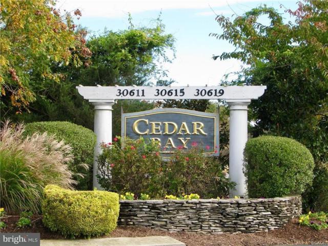 30611 Cedar Neck Road #2207, OCEAN VIEW, DE 19970 (#1001573878) :: The Rhonda Frick Team