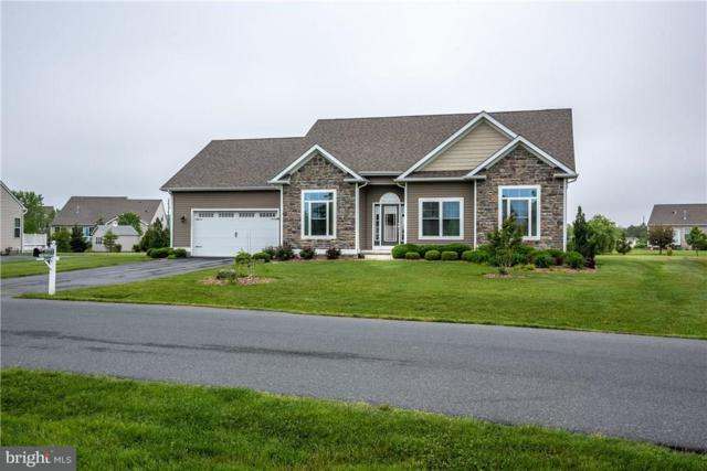 24822 Shoreline Drive, MILLSBORO, DE 19966 (#1001573816) :: The Windrow Group