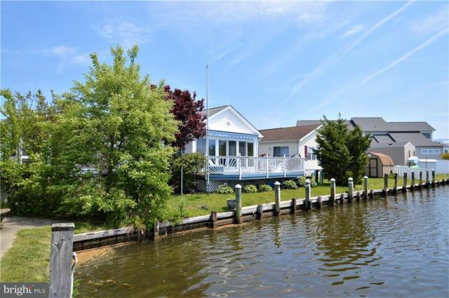 37058 Laws Point Road, SELBYVILLE, DE 19975 (#1001573852) :: The Rhonda Frick Team
