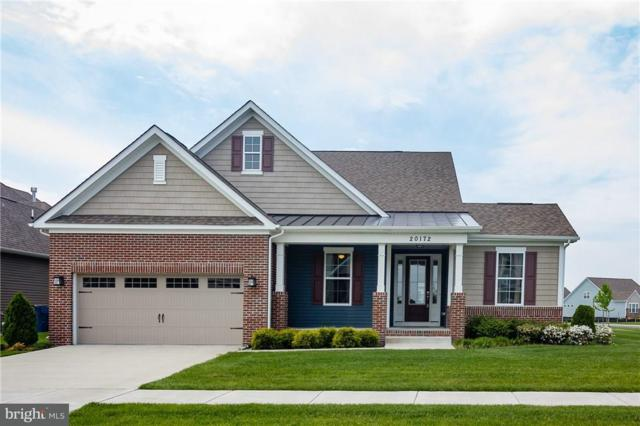 20172 Trap Pond Court, MILLVILLE, DE 19967 (#1001573856) :: The Rhonda Frick Team