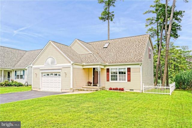 10 Burrwood Court, MILLSBORO, DE 19966 (#1001574002) :: The Allison Stine Team