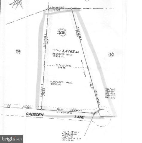 Gadsden Lane, LOCUST GROVE, VA 22508 (#1001577456) :: Bob Lucido Team of Keller Williams Integrity