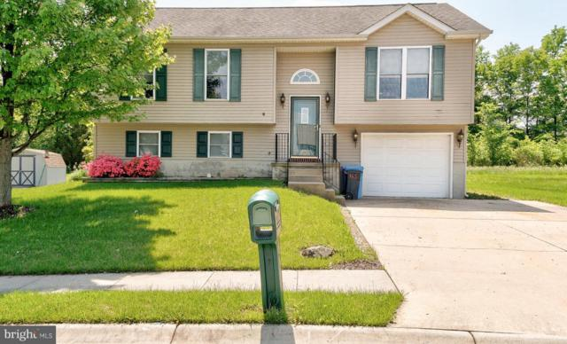 165 Carnival Drive, TANEYTOWN, MD 21787 (#1001611556) :: Colgan Real Estate