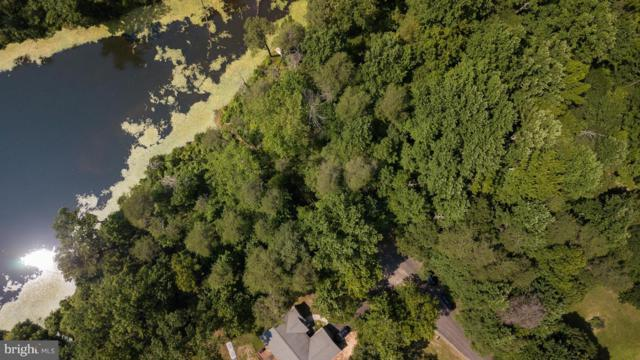 Taft Court  Presidential Lakes, KING GEORGE, VA 22485 (#1001626216) :: ExecuHome Realty