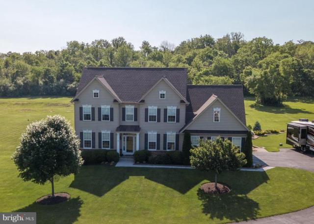 375 Crispin Trail, WINCHESTER, VA 22603 (#1001629778) :: Remax Preferred | Scott Kompa Group