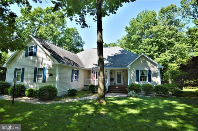 207 Greenway Drive, DAGSBORO, DE 19939 (#1001648502) :: The Windrow Group