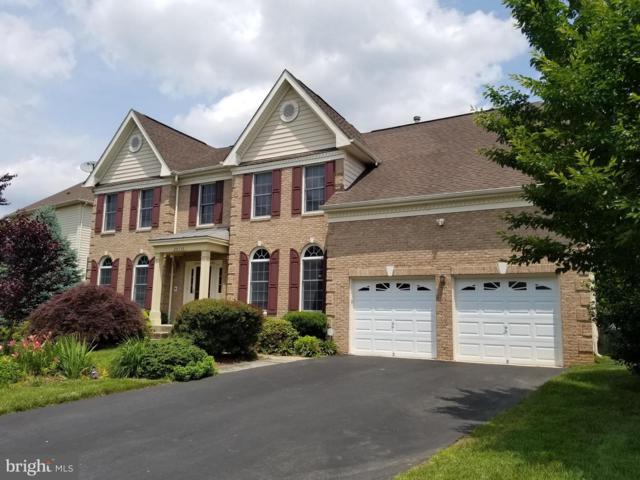 20558 Noland Woods Court, STERLING, VA 20165 (#1001649638) :: Colgan Real Estate