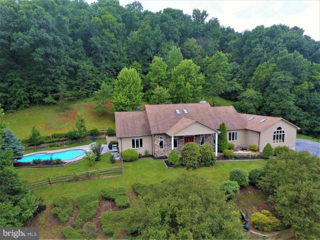 1564 Buck Mountain Road, BENTONVILLE, VA 22610 (#1001665164) :: Colgan Real Estate