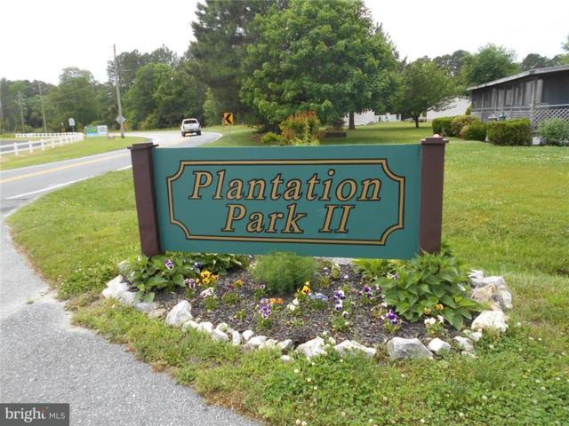 243 Maryland Drive, FRANKFORD, DE 19945 (#1001729114) :: The Rhonda Frick Team