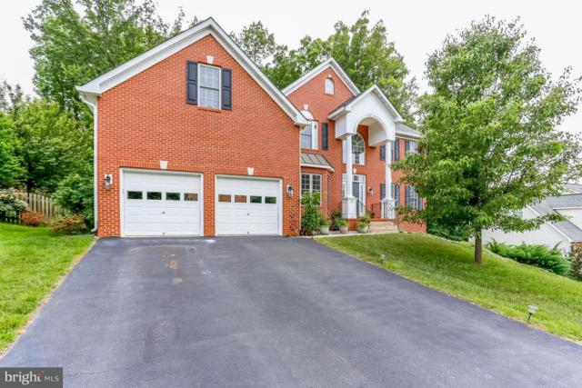6 Oleander Drive, STAFFORD, VA 22554 (#1001743868) :: Colgan Real Estate