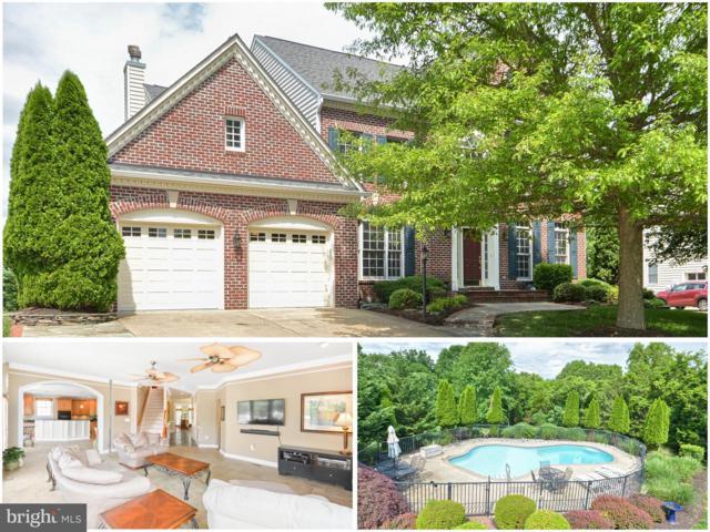 5466 Lick River Lane, GAINESVILLE, VA 20155 (#1001756466) :: Colgan Real Estate