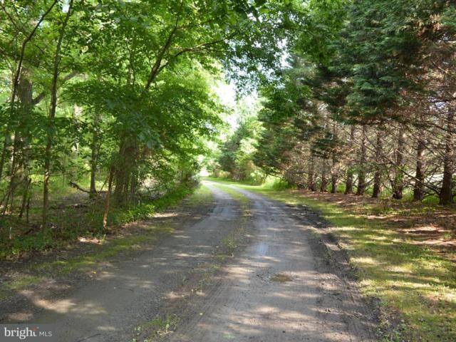 339 Money Road, TOWNSEND, DE 19734 (#1001756698) :: The Allison Stine Team