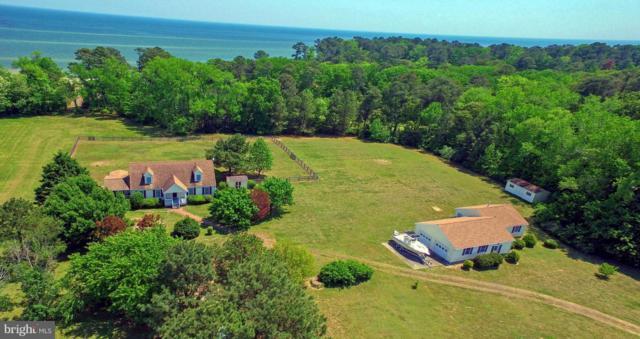 156 Tranquility Road, REEDVILLE, VA 22539 (#1001758928) :: Colgan Real Estate