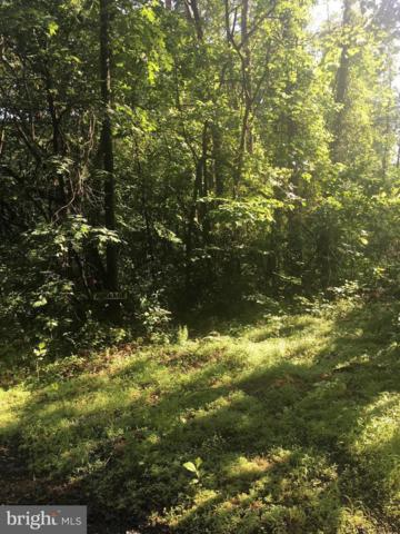 Whispering Pine Lane, BENTONVILLE, VA 22610 (#1001760488) :: Colgan Real Estate