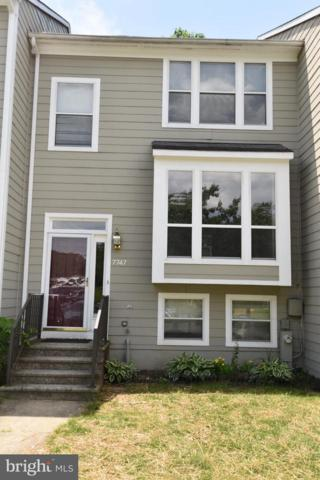 7747 Chatfield Lane, ELLICOTT CITY, MD 21043 (#1001784278) :: Browning Homes Group