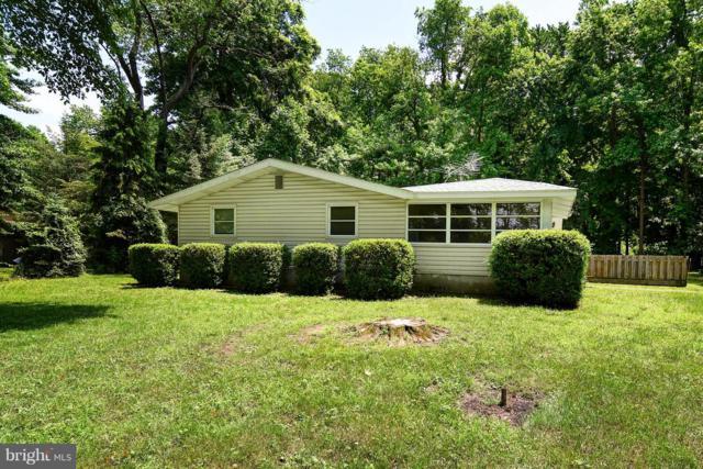 32 Drift Way, EARLEVILLE, MD 21919 (#1001796766) :: Colgan Real Estate