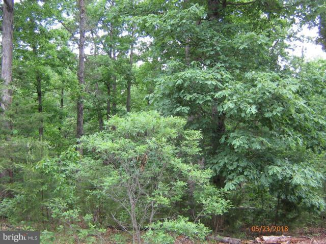 LOT 176 Traveller Road, MINERAL, VA 23117 (#1001798212) :: ExecuHome Realty