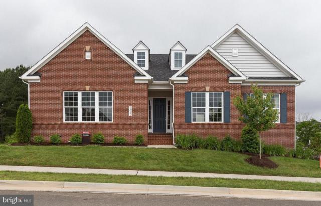 23921 Tenbury Wells Place, ALDIE, VA 20105 (#1001800396) :: Remax Preferred | Scott Kompa Group