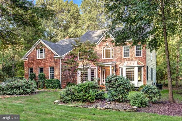 3103 Pine Oaks Way, OAK HILL, VA 20171 (#1001800916) :: Remax Preferred | Scott Kompa Group