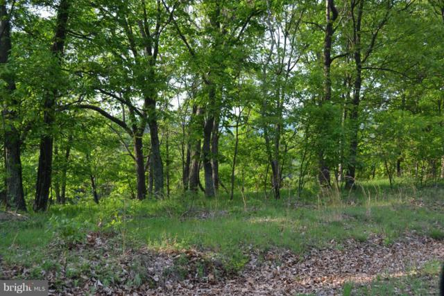 Bluffs Trail Drive, ROMNEY, WV 26757 (#1001806074) :: Hill Crest Realty