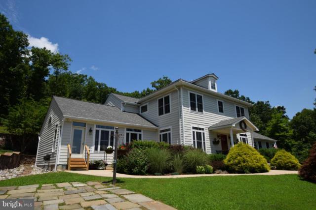 4752 Greene Love Lane, MARSHALL, VA 20115 (#1001818602) :: Remax Preferred | Scott Kompa Group