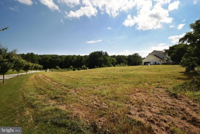 11924 Bluestone Road, KINGSVILLE, MD 21087 (#1001820828) :: Colgan Real Estate