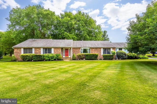 3 Sycamore Court, GRASONVILLE, MD 21638 (#1001821956) :: Colgan Real Estate